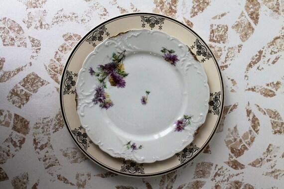 2 plates Vintage: porcelain Limoges and DIGOIN SARREGUEMINES France