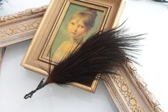Plume naturelle ancienne de chapellerie, grande plume marron, chapellerie, 1900, plume pour chapeau, PLUM181509