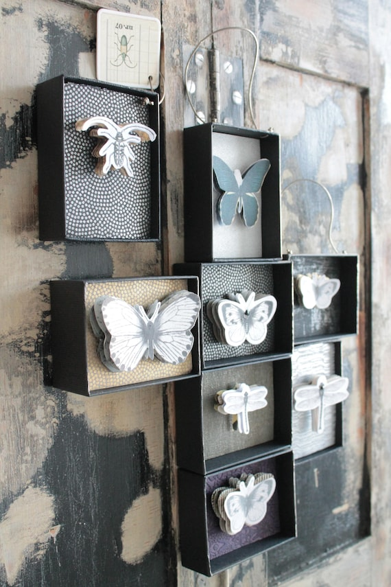 Curiosity cabinet, paper butterfly, butterfly box, paper insects, butterfly décor, curiosities