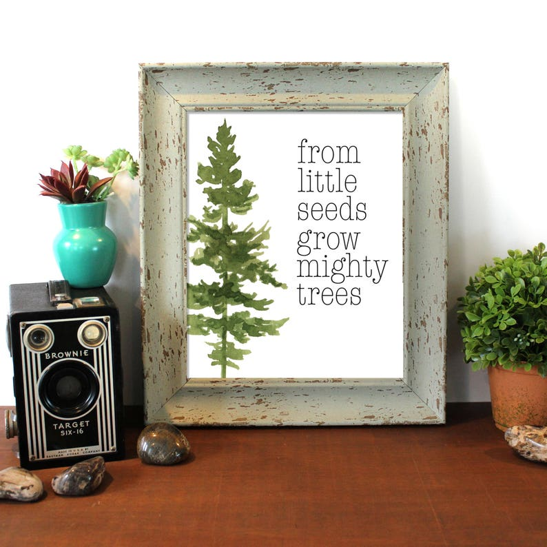 From Small Seeds Grow Mighty Trees Tree Quotes Tree Etsy