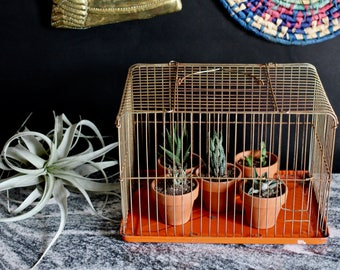 Old Brass Birdcage with Orange bottom - great for plants or display