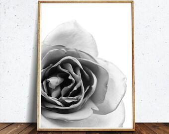 Roses Print, Black and White Art, Flowers Print, Rose Printable, Rose Photograph, Photography Print, White Rose Art, White Flower Art, Roses