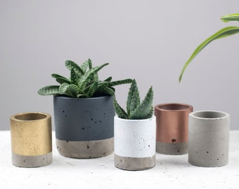 Concrete Colour block Plant pot - Concrete planter - Cactus Planter - Succulent Planter - Medium planter - Plant pots