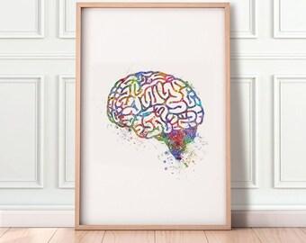 Brain Watercolor Art Print  - Brain Anatomy Watercolor Print - Brain Anatomy Poster - Science Art - Brain Anatomy Art AS13