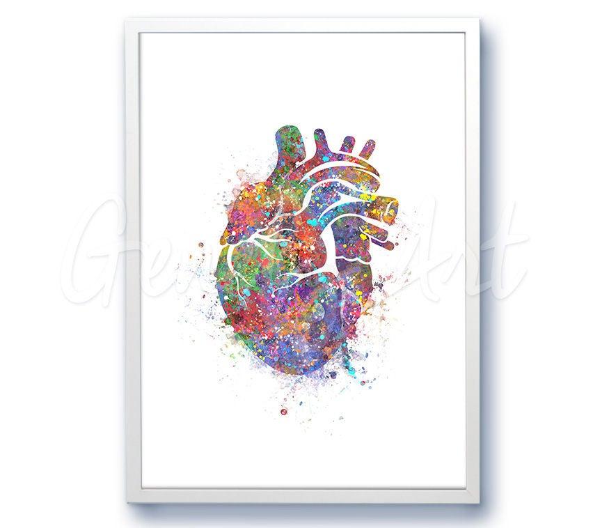 Herz Aquarell Kunstdruck Herz Anatomie Aquarell Malerei | Etsy