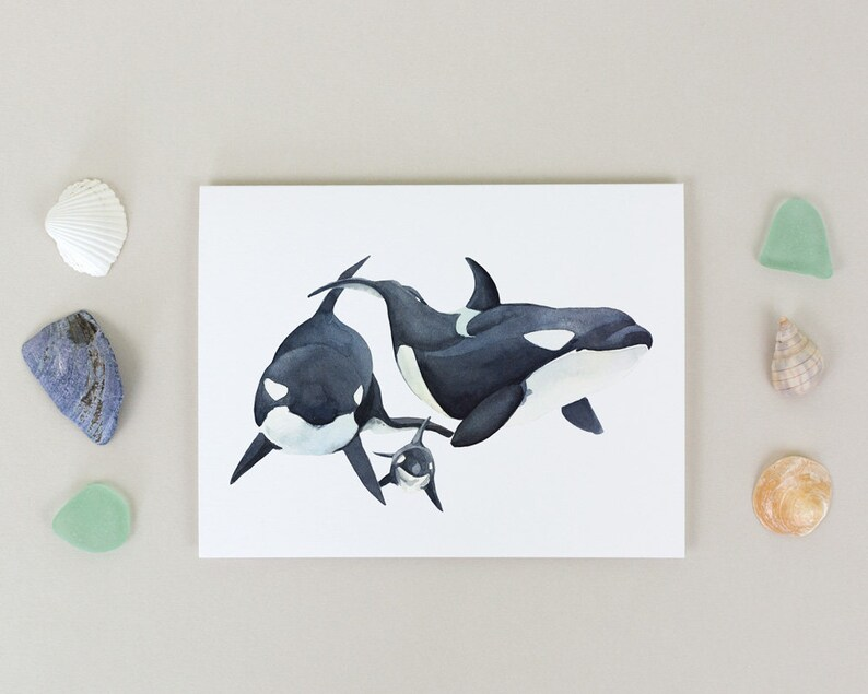 Orca Family Note Card - Single Printed Watercolor Notecard - 4 25