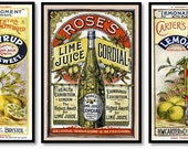 Lemon Lime Fruit Syrup Ads Vintage Ads Set of 3 Art Prints Old Kitchen Beverage Drink Illustrations