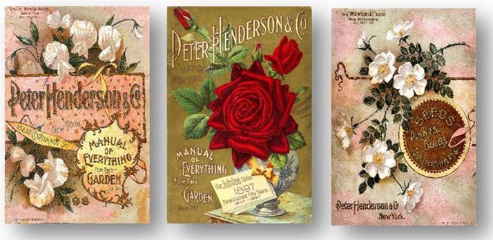 Art Art Decor Retro Floral Gems 1897 Rose Flower Seed Catalog Poster Lustrous Us Seller