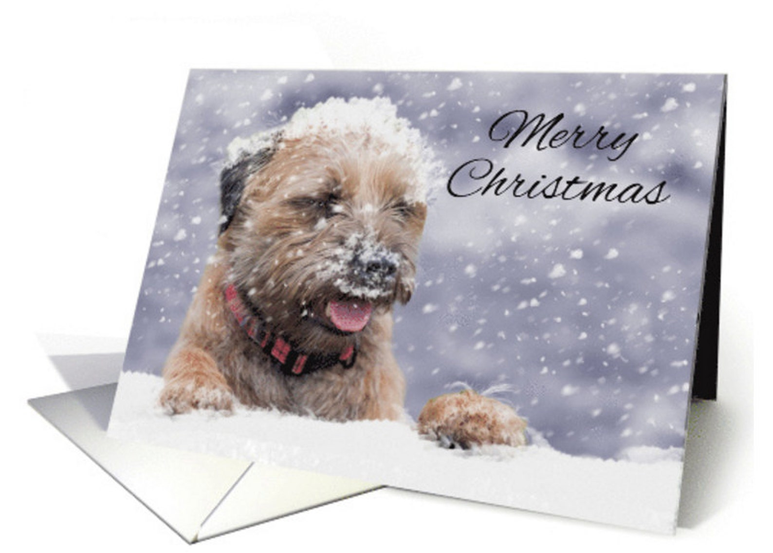 border terrier christmas card christmas wishes oil paint