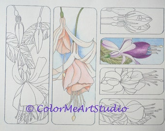 Bookmark Coloring Page, Fuchsia Coloring Bookmark Page, Bookmarks to Color, DIY Bookmarks with Flowers, Print and Color Bookmarks, Printable