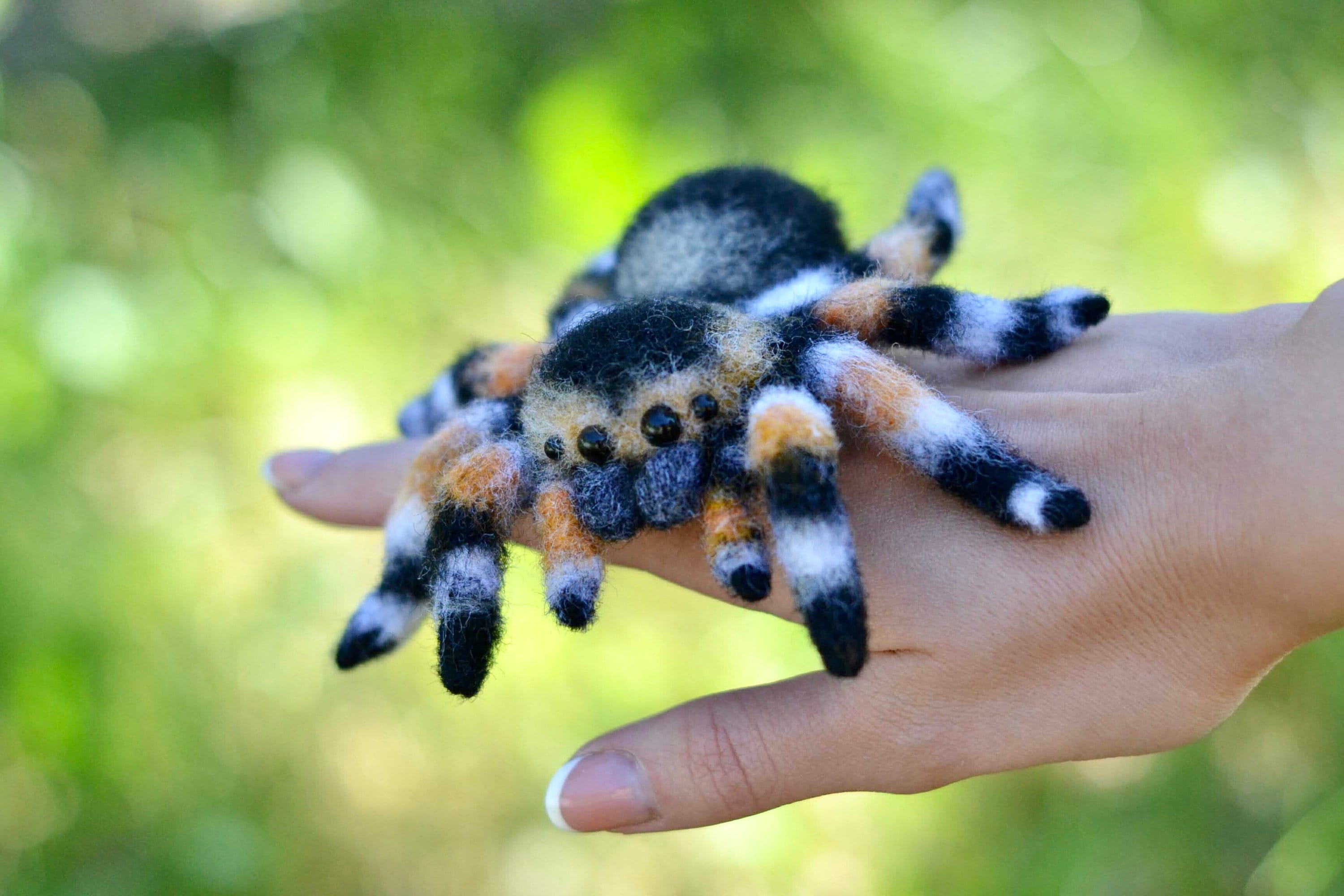 Tarantula Made To Order Jumping Spider Toy Needle Felted Etsy