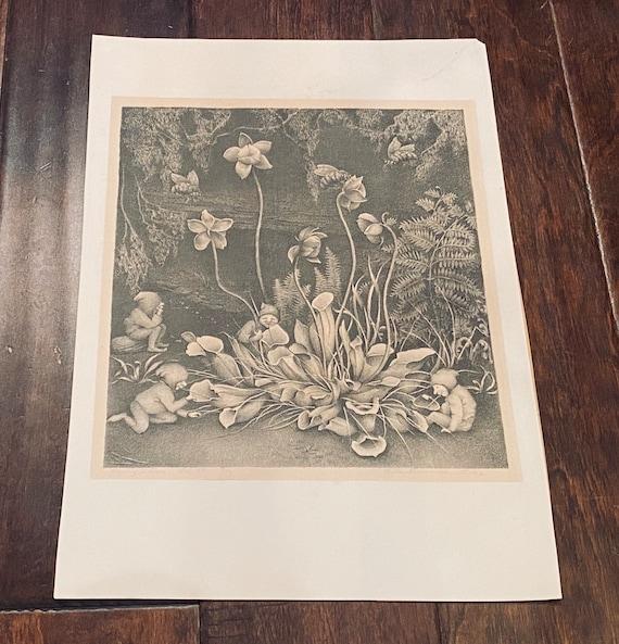 Vintage Ella Fillmore Lillie Print- Original Signed Art