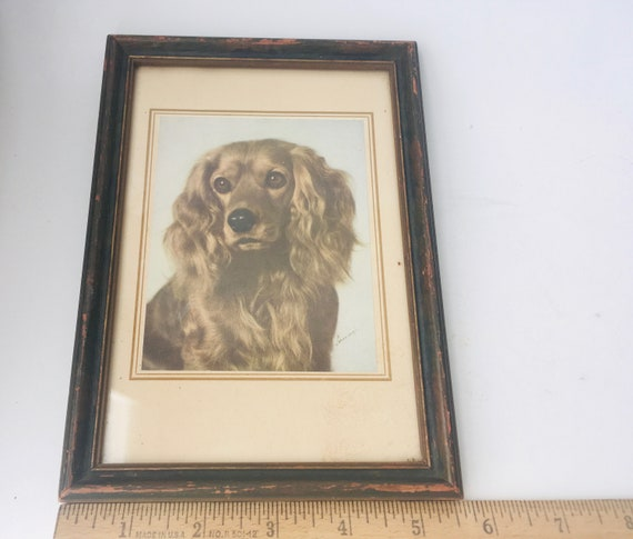 Vintage Framed Photo Of A Cavalier King Charles