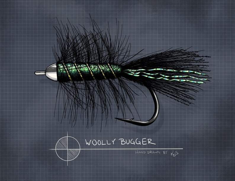 Woolly Bugger Streamer 8 x 10 image 0