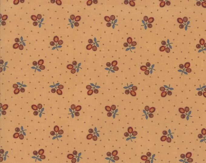 38081 13 / Moda / Lancaster / Jo Morton / Fabric / Quilting Fabric / Reproduction