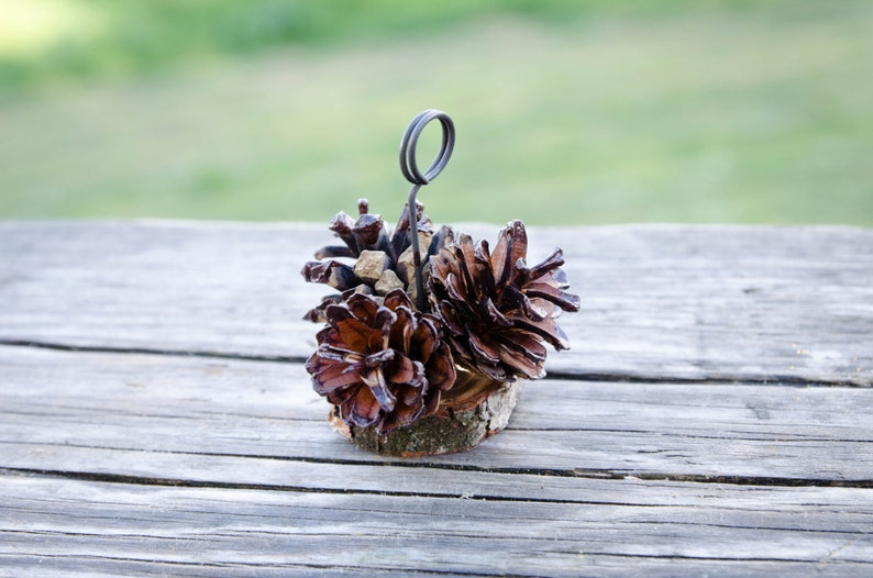 10 pcs Brown Tips Pine Cone Place Card Holders Rustic Woodland Wedding Escort Card Holders Fall Wedding Table Number Holders Photo Holders