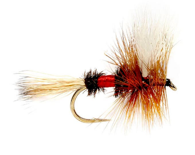 Royal Wulff Hair Wing Dry Fly - Hook Size 14 - Hand-Tied Fly Fishing Trout Flies