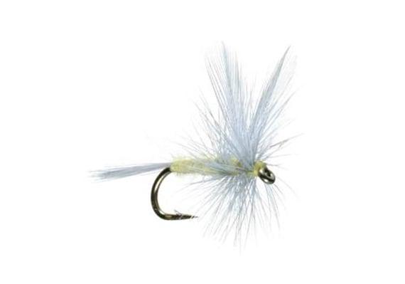 6 Size 22 PALE MORNING DUN PREMIUM LIGAS FLY FISHING FLIES