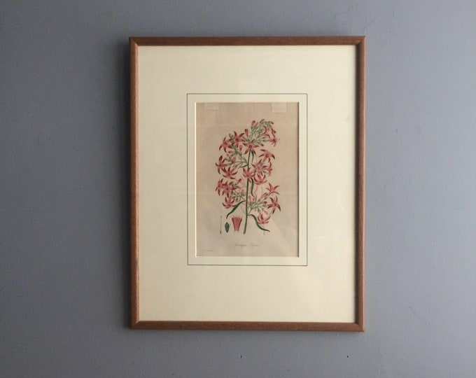 framed water colour etching