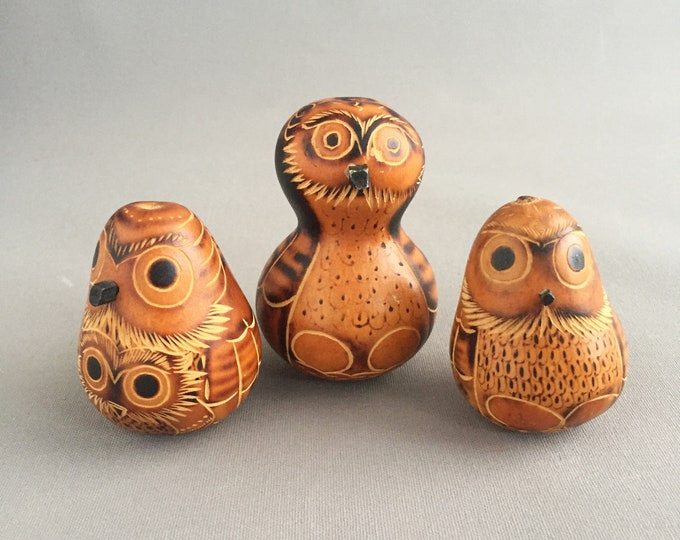 South American Owl Carved Gourd Calabash Sculpture Statue Peruvian Folk Art Hand Carved