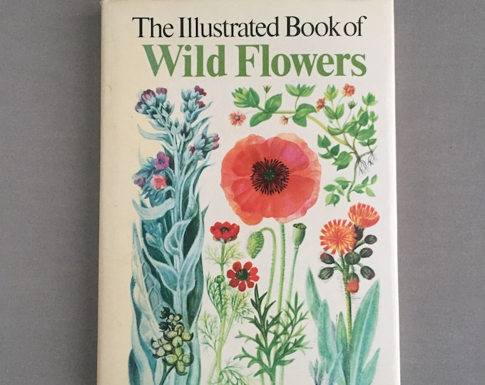 Illustrated book of wild flowers