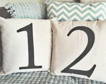 Custom Number Pillow Cover ONLY 18x18