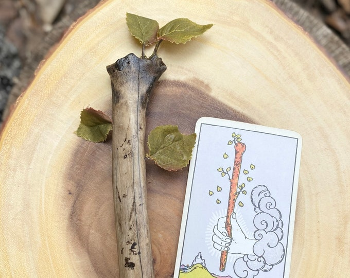 Bone and Crystal Wand, Inspired by Tarot Ace of Wands