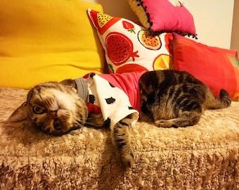Cat Raglan T-shirt, Cat Shirt, Kitten Pyjamas, Cat PJs, Pet Gift, Cat Lover Gift, Gifts for Pets, Gifts for Cats, Cat Clothing, Cat Costume