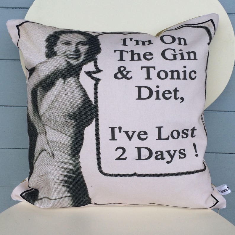 Gin and Tonic pillow  G and T cushion  im on a diet gift  image 0
