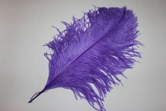 """15-17/"""" One purple first grade ostrich small wing feather 375-425mm"""