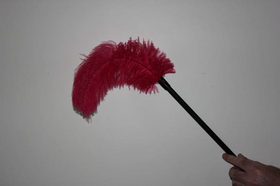 Children,s toy ostrich feather dusters assorted colours 300mm overall 1st grade