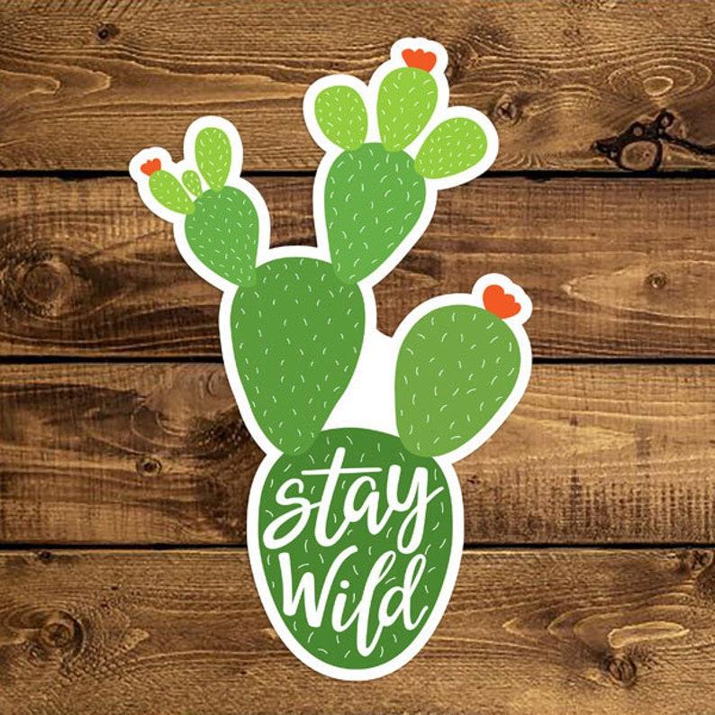 Stay Wild Vinyl Cactus Sticker 4