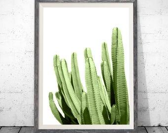 Cactus Art Print, Cactus Printable Art, Cactus Poster, Cacti Decor, Cactus Photography, Cacti Art, Cacti Printable Art, Cactus Prints