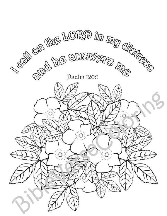 Verso de la Biblia 5 colorear a páginas adulto de citas de   Etsy