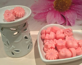 Strawberry & Watermelon Highly Fragranced Soy Wax Malts