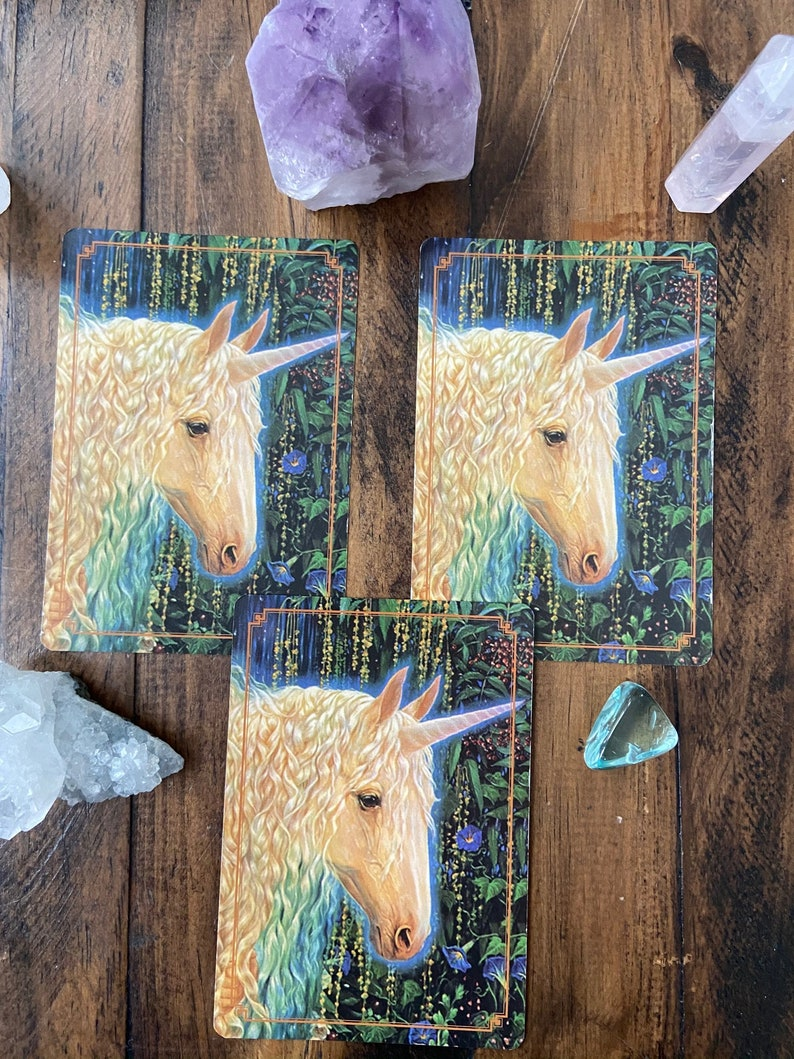 3 Card Oracle Card Reading from a Highly Sensitive Person image 0