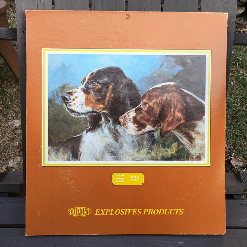 Dupont Explosives Products 1986 Calender Bird Dog Hunting English Springer  Spaniel and Pointer Nice!