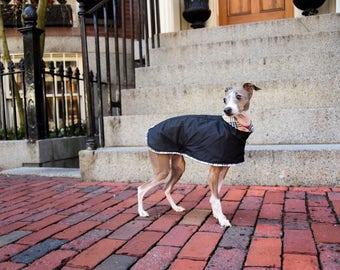 Tartan Trim Dog Trench Coat (All Breeds)
