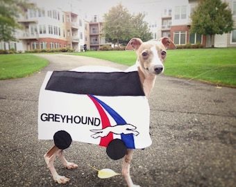 Cane & Co. Greyhound Bus Halloween Costume
