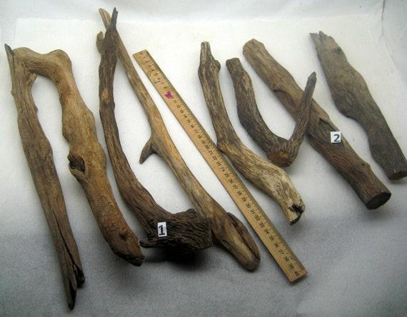 Raw 1 Driftwood Bird Claw Chicken Leg Natural Beach Wood Supply Driftwood Sticks Raven Claw Drift DIY Crafts Rustic Art Decor Crow