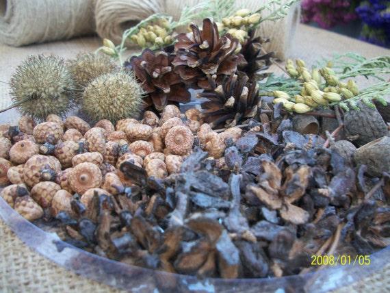 Potpourri Rustic Natural Decor Vase Filler Bowl Fall Etsy