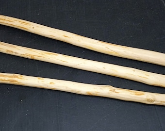 3 dry thorn branches. Blackthorn. Blanks for magic wands.