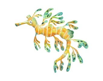 Art Print Illustration - Leafy Seadragon Seahorse
