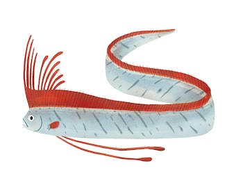 Art Print Illustration - Oarfish Sea Serpent