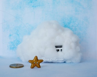 Cloud-house for a small star