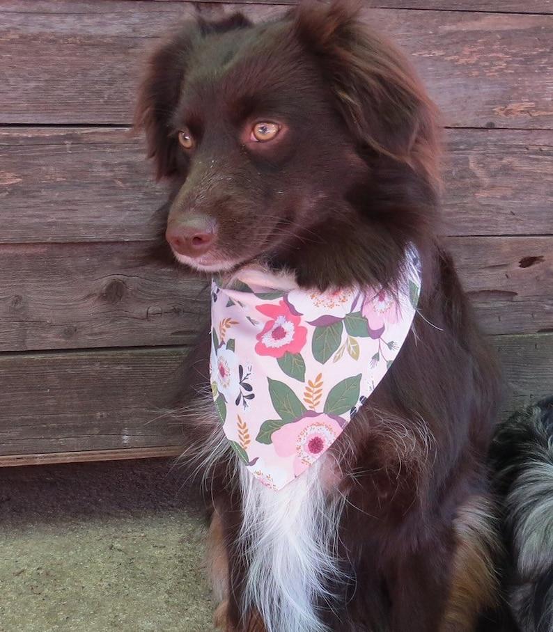 Spring Bandana Reversible Dog Scarf Pretty Personalized Bandanna Flowers Summer Bandana Floral Dog Bandana