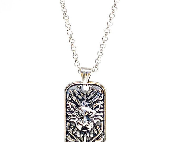 Men's stainless steel dog tag lion necklace.