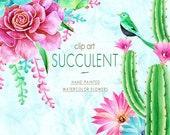 60 OFF SALE Watercolor Floral Digital Clip Art, Succulent Clip Art, Cactus clipart, Aloe Vera, Cacti, Plant, Botanical Greenery PNG, Diy