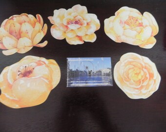 5 postcards with minimum flowers 9 cm x 7 cm