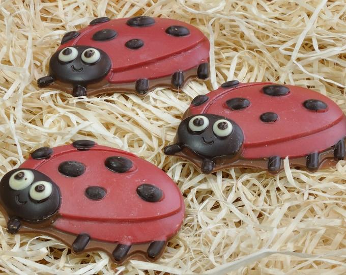 Handmade Belgian Chocolate Ladybird